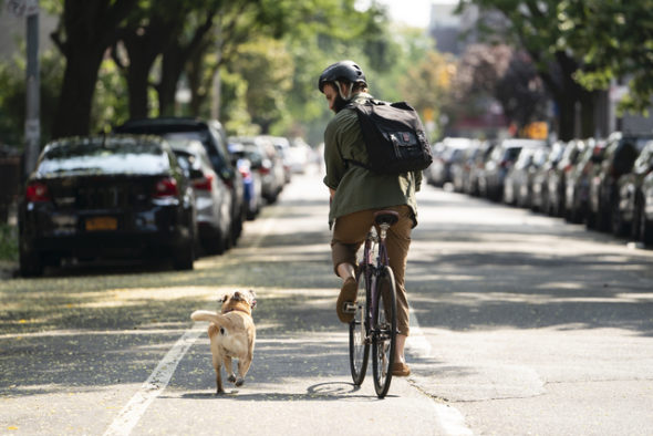 ben sinclair riding bike next to dog, HBO Series